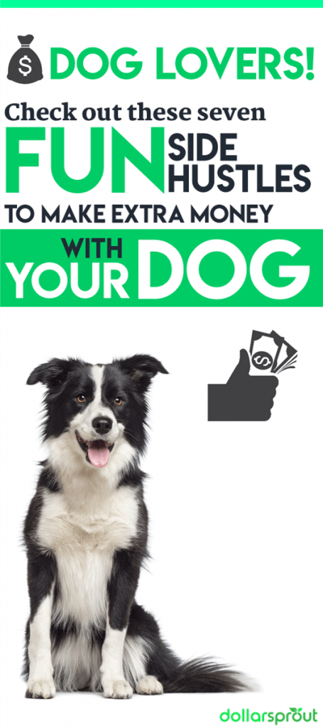 7 Ways to Make Quick Cash with Your Dog | Make Money with Your Dog | Ways to Make Extra Money | Side Hustle Ideas | Money Making Ideas