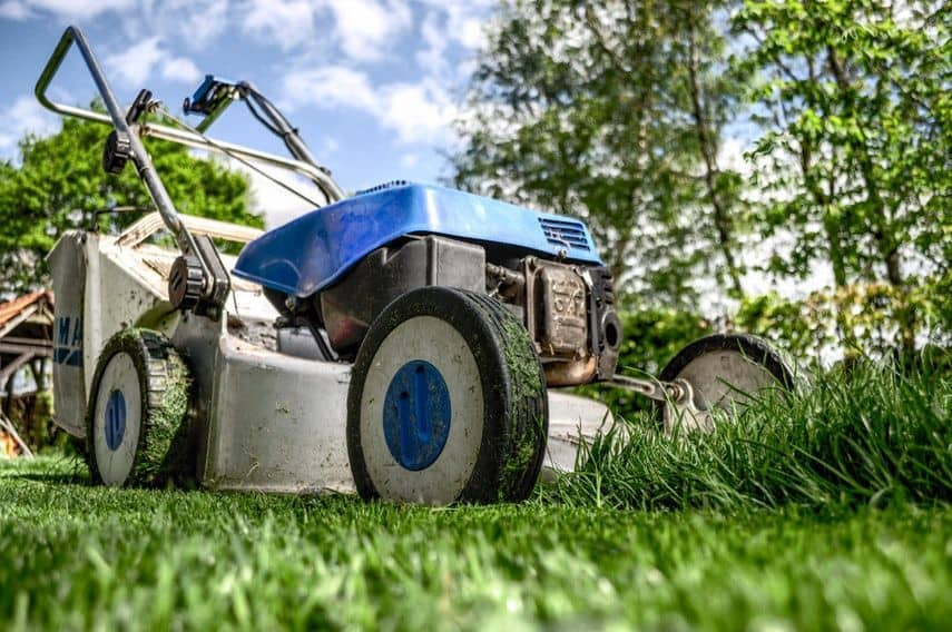 Mow lawns as a kid to make money