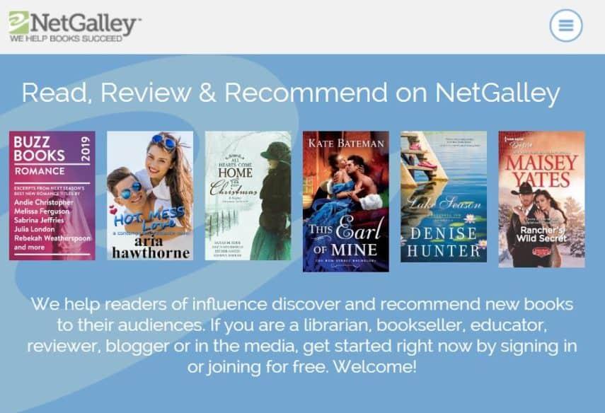 NetGallery homepage