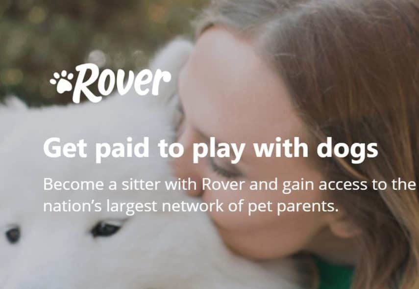 Rover homepage