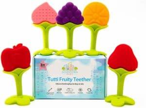 Fruit Teethers